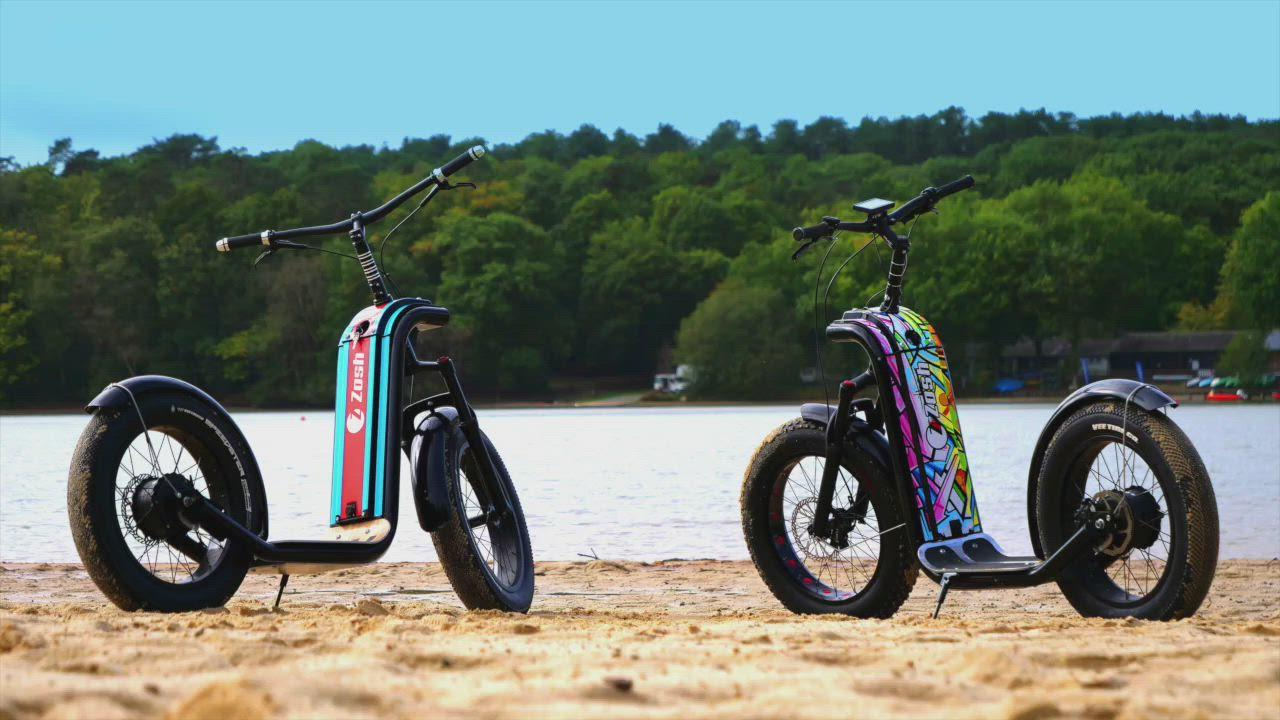 trottinettes électriques adultes à grandes roues